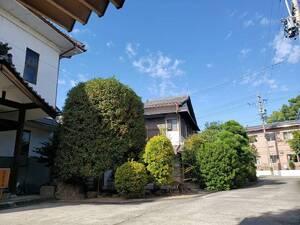 本覚寺 のうこつぼ_19497