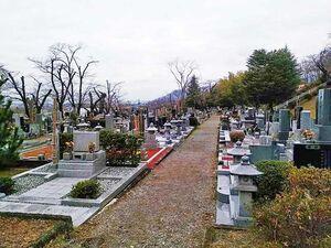 甲府市 つつじが崎霊園_19537