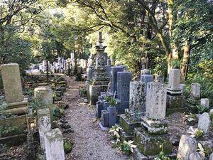 例幣墓地_20398