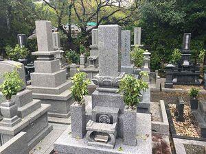 萩市営 西の浜墓地_20495