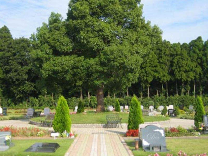 緑に囲まれた心地よい霊園