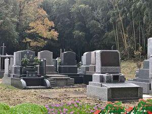 閑静な雰囲気の金谷霊園
