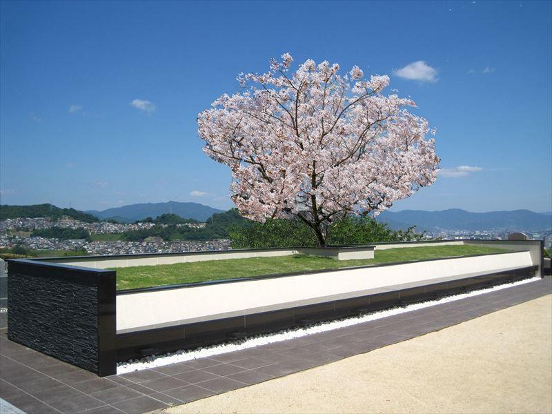 広島平和霊園_21398