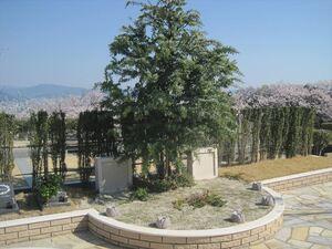 広島平和霊園_21400