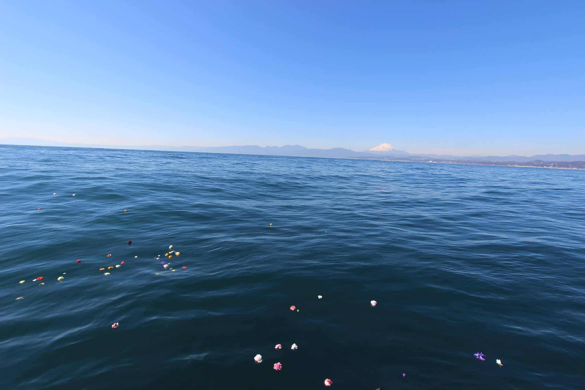 海洋散骨と富士山