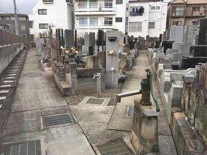 法蓮寺 上の墓地_21772