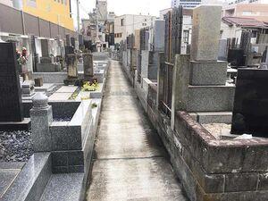 法蓮寺 上の墓地_21773