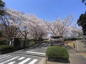 鎌倉霊園_22635
