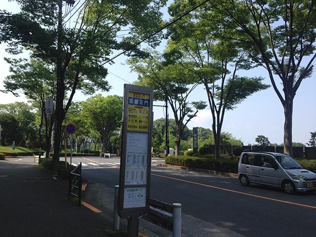 東京霊園_235
