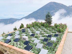岩窪墓苑 ガーデニング型樹木葬「フラワージュ」_2566