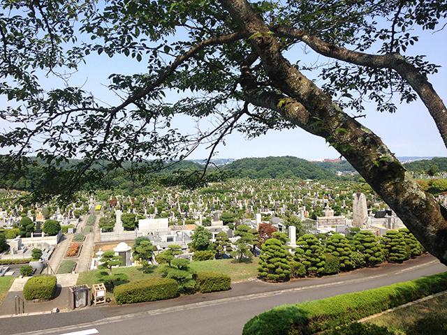 東京霊園_262