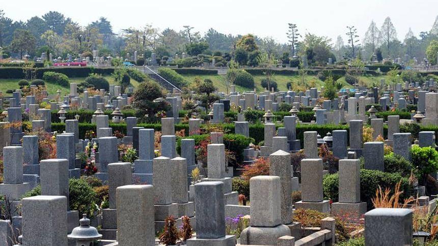 公営墓地の全体像の写真