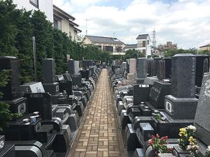 竹の塚霊園_301
