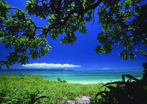 沖縄に眠る永代供養 ロハスエンディング しま風_3613