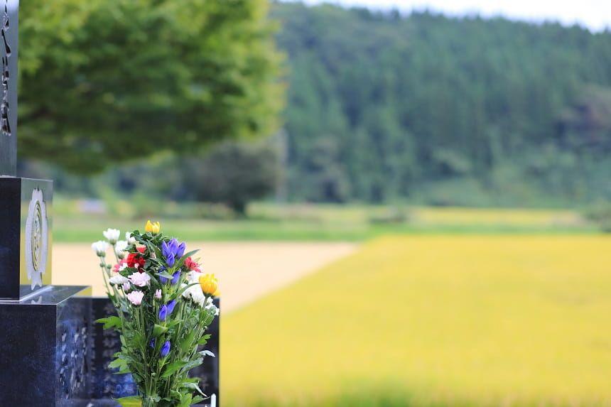 霊園の芝風景