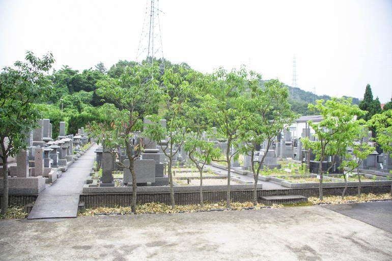 宝善院桜霊園_4077