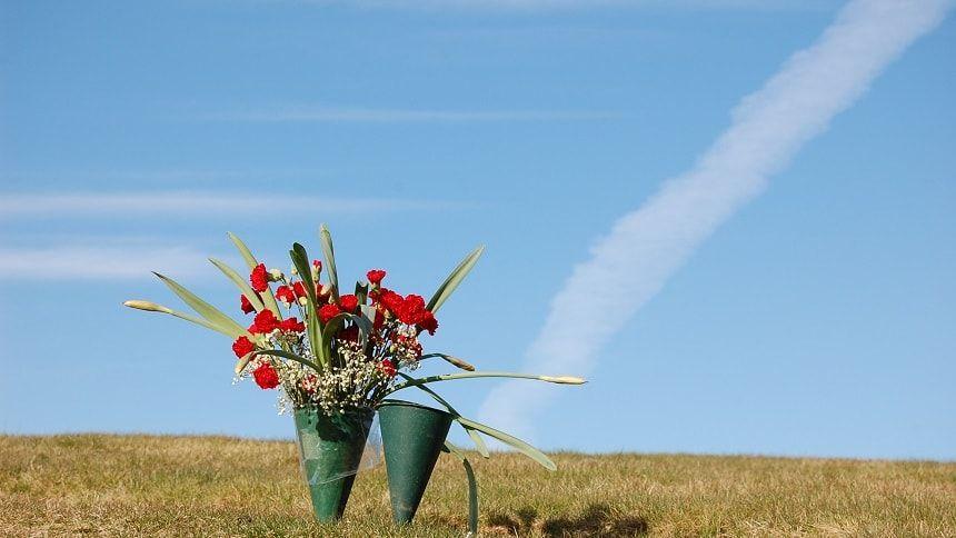 青空の下に供えられている赤い花