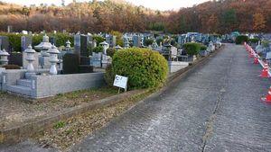 上田市霊園_4461