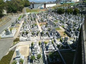 四国中央市営 桃山新墓園_4600