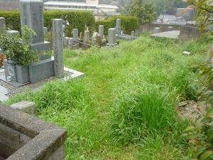 松山市営 鷺谷墓地_4825