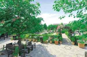 練馬ねむの木ガーデン_4941
