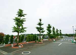 湘南公園墓地茅ヶ崎霊園_5047