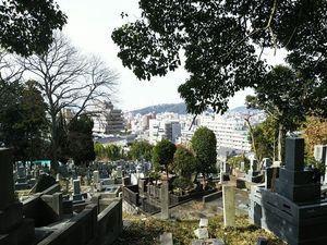 松山市営 鷺谷墓地_5194