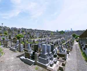 横浜市営 三ツ沢墓地_5283