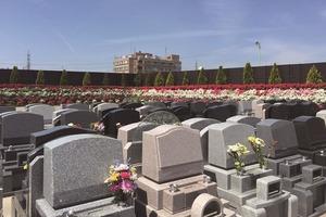 やすらぎ聖地霊園 開放感あふれる墓地風景