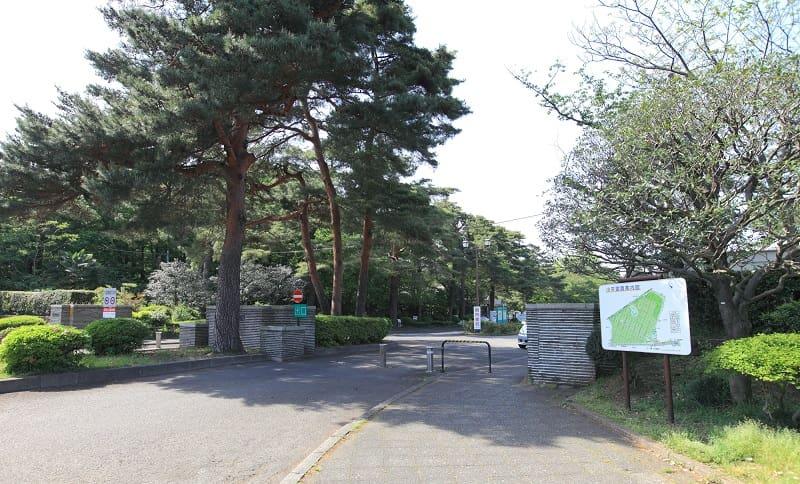 小平霊園は東京西エリアの都立霊園。応募のコツや審査について知りましょう。