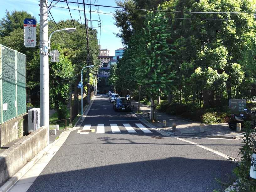 青山霊園12