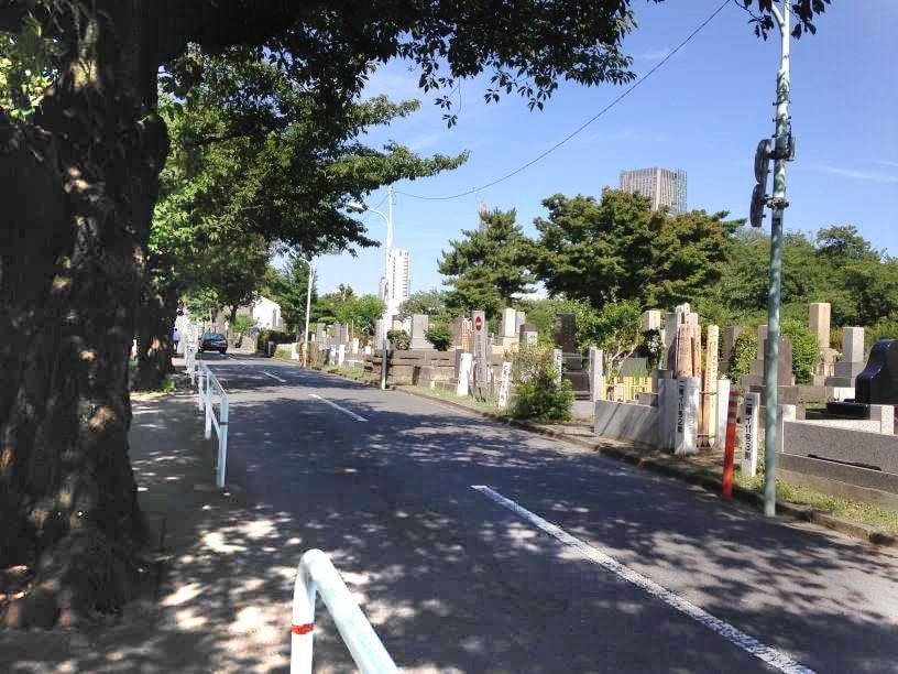 青山霊園14