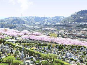 鎌倉霊園_5991
