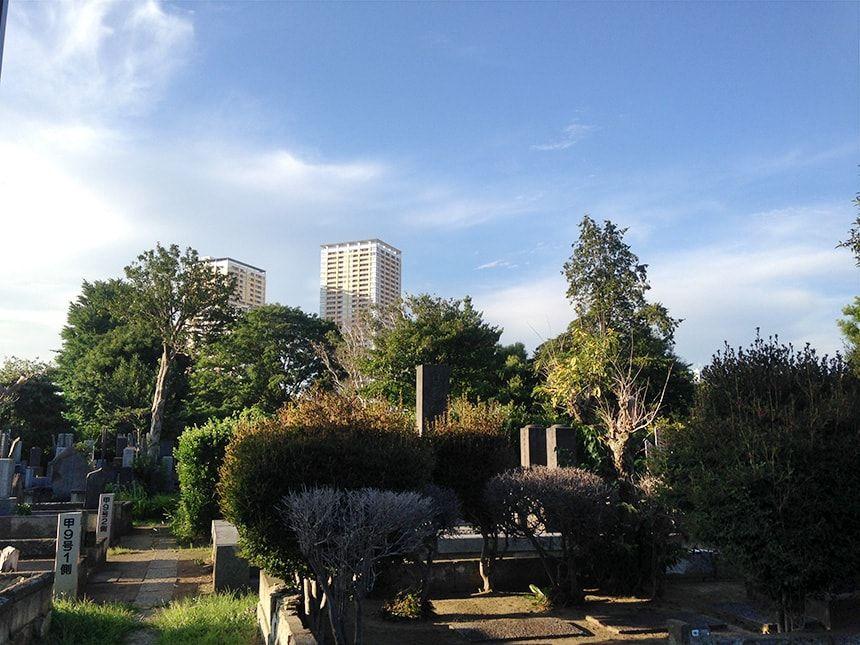 谷中霊園7