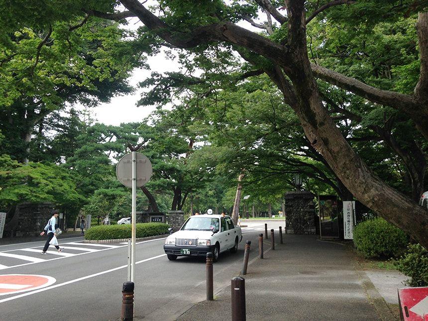 多磨霊園3