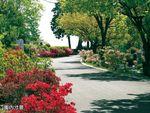 地産霊園の園内風景