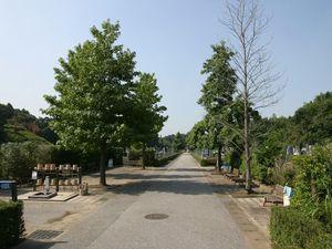松戸市営白井聖地公園の通路