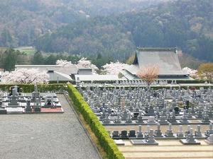 比叡山延暦寺大霊園の全景