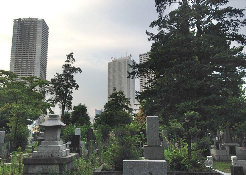 雑司ヶ谷霊園10