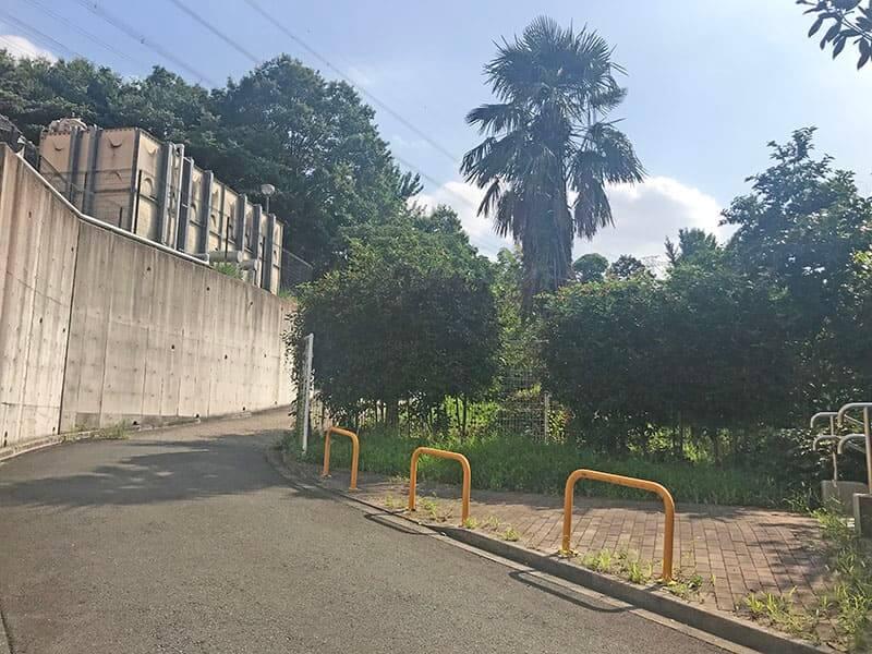 町田いずみ浄苑フォレストパーク道路
