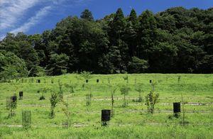 森の墓苑_7271