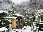 冬の雪が積もったメモリアルフォレスト多磨の様子