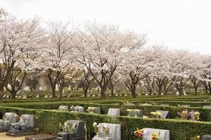 さいたま市営霊園 思い出の里_7976