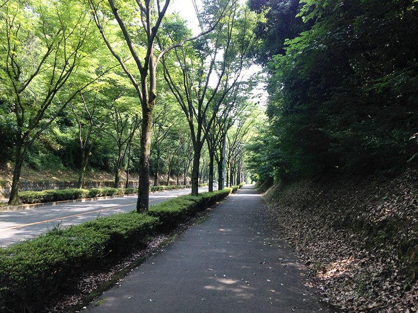 八王子霊園4