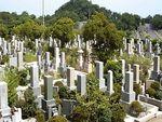 神戸市立 鵯越墓園_8312