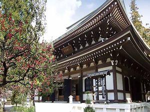 大本山 円覚寺_8488