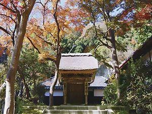 大本山 円覚寺_8537