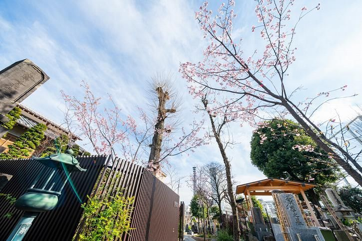 恵光メモリアル新宿浄苑