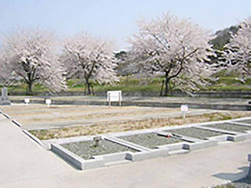 中野霊園_9346