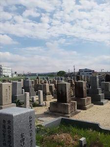 招堤共同墓地_9416